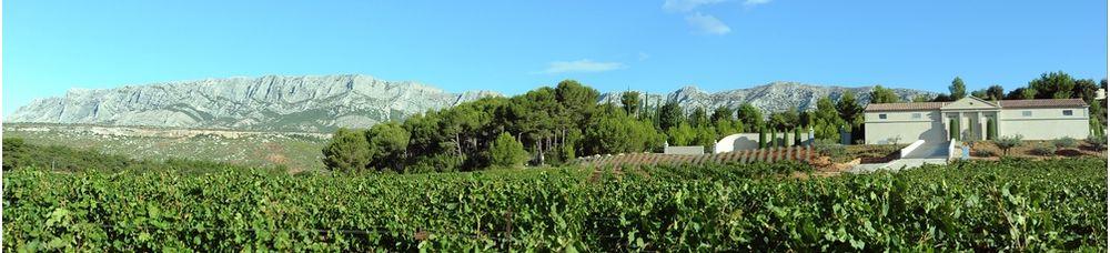 Le Château Gassier, au pied de la montagne Installé en contrebas du massif de la Sainte-Victoire, dans le décor énorme de la Provence de Pagnol, la maison Gassier est en pleine transformation. Arrachage et replantation, conversion bio, chai en cours de modernisation. Si, pour l'instant, l'indépendance financière est assurée par une production quasi exclusive de vins rosés de bonne qualité pour 140 000 cols environ, les ambitions sont différentes. Chez Gassier, on rêve à voix haute d'un beau vin rouge qui puisse devenir une icône du Sud. Sans oublier qu'il faut dix ans à une vigne pour donner le meilleur d'elle-même. Le vin n'est pas une activité de gens pressés.